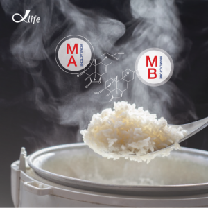 Cách chế biến gạo hữu cơ Thần Nông Ong Biển giúp tăng giá trị dinh dưỡng