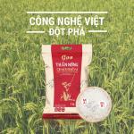 Gạo Hữu Cơ Ong Biển - Đột Phá Công Nghệ Việt