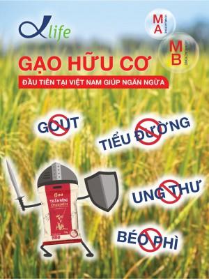 Gạo hữu cơ đầu tiên tại Việt Nam giúp ngăn ngừa bệnh gout, đái tháo đường, béo phì