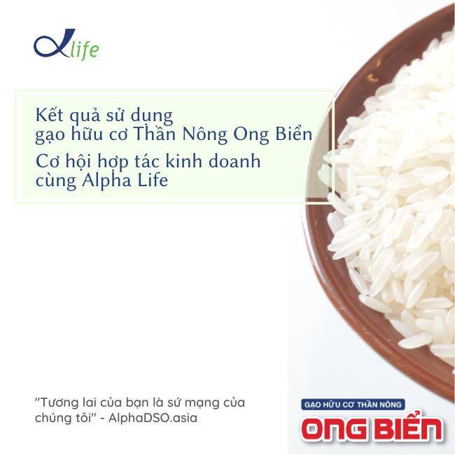 Kết quả sử dụng gạo hữu cơ Thần Nông Ong Biển