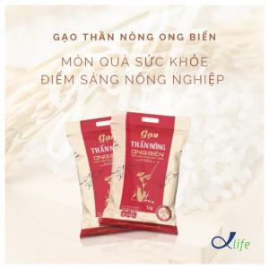 Gạo thần nông Ong biển không chỉ là món quà sức khỏe mà còn là điểm sáng cho nông nghiệp Việt