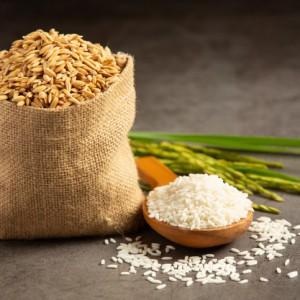 Top 5 loại gạo dẻo thơm hiện nay trên thị trường