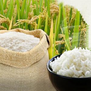 Top thương hiệu gạo hữu cơ sạch
