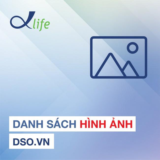 Danh sách hình ảnh DSO.VN