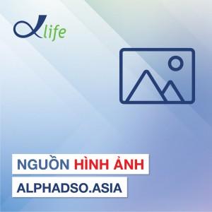 Nguồn hình ảnh Alphadso.asia